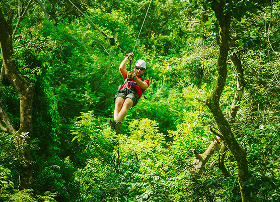 person zip-lining in the trees