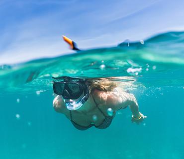 Snorkeling Tours image