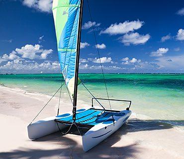 Catamaran Cruise image