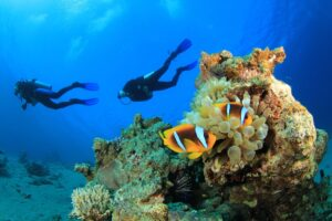5 Things To Do Near Couples Negril